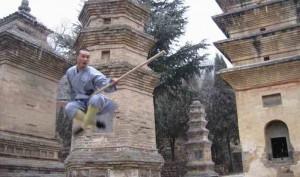 Northern Shaolin Kung Fu Moves