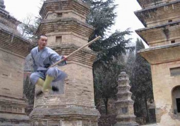 Northern Shaolin Kung Fu Moves